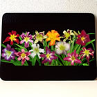cutting board disp of daylilies 2