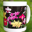 mug DS-024 Orchids Galore 7045