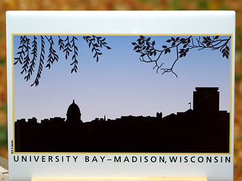 tile DS-002-68 University Bay 8333